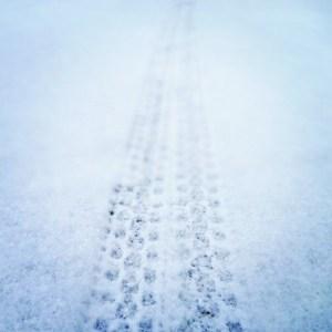 traccia_neve