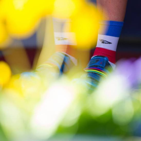 Rainbow details